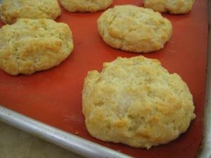 Einkorn RWS Biscuits